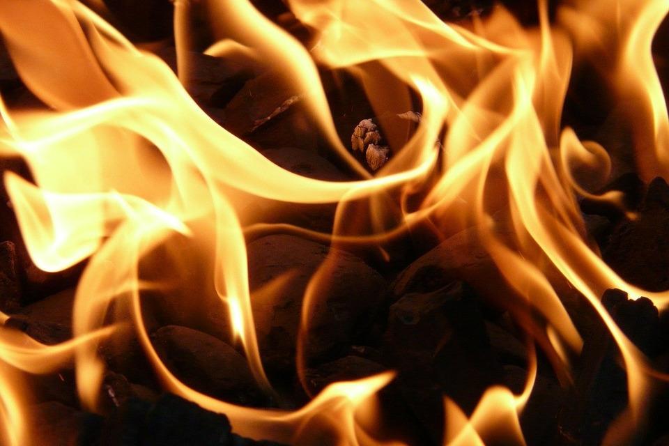 В Ленобласти сгорел туристический автобус