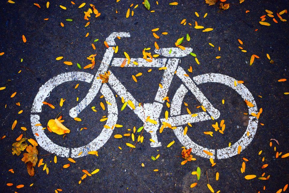 Из России в Финляндию проложат велодорожку