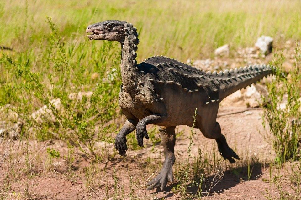В Кисловодске нашли следы динозавра