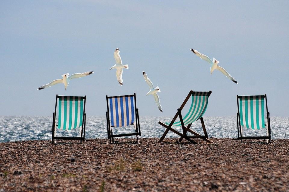 Лето, плчж и чайки